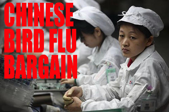 chinese bird flu