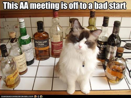 aa meeting bad start