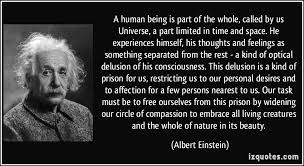 einstein quote