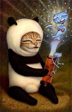 panda cat bong