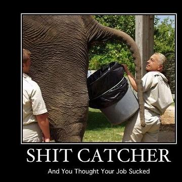 Shit-Catcher-Job