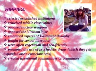 hippie values