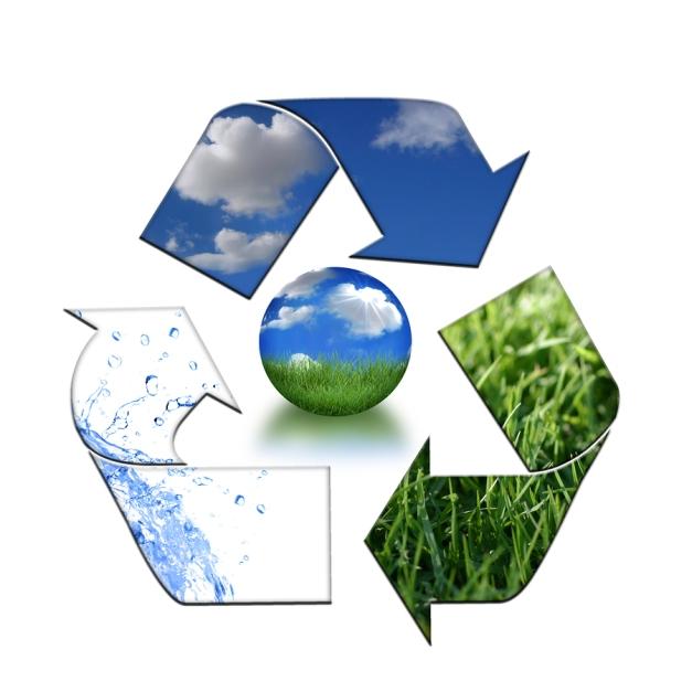 environment natural economy