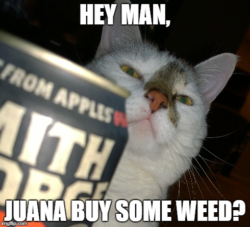 hey man wanna buy some weed
