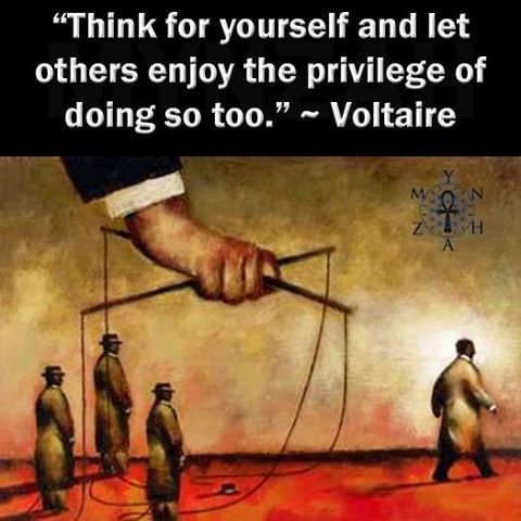 think-for-yourself-voltaire